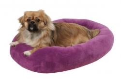 All Star - Bettchen für Katzen und Hunde